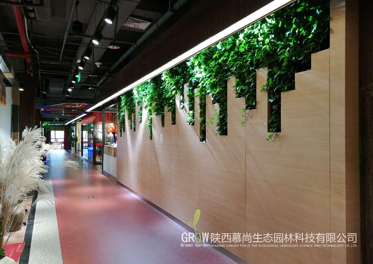 大话南门垂直植物墙