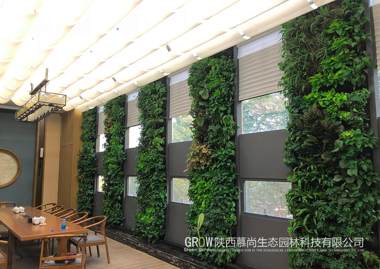 办公室室内植物墙