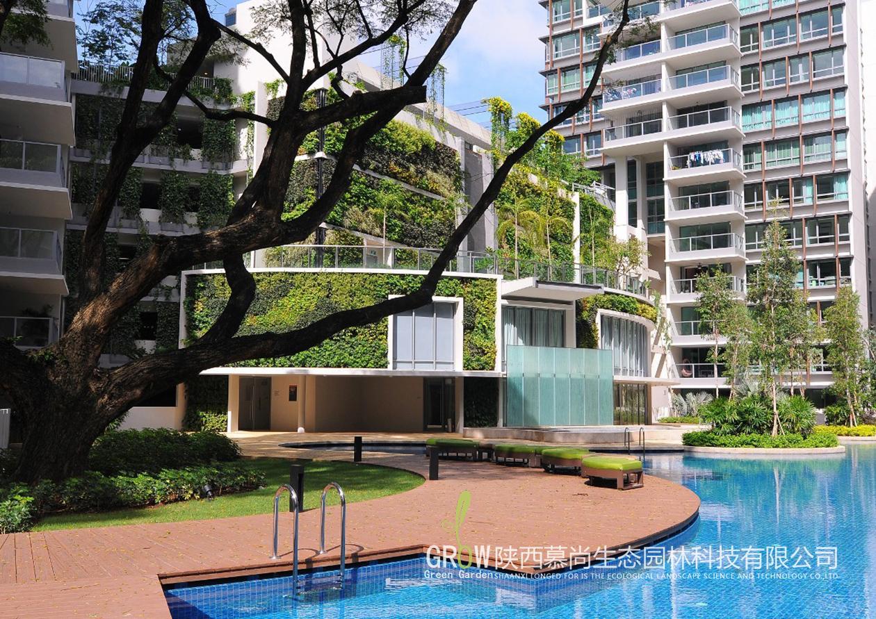 酒店建筑外立面垂直绿化
