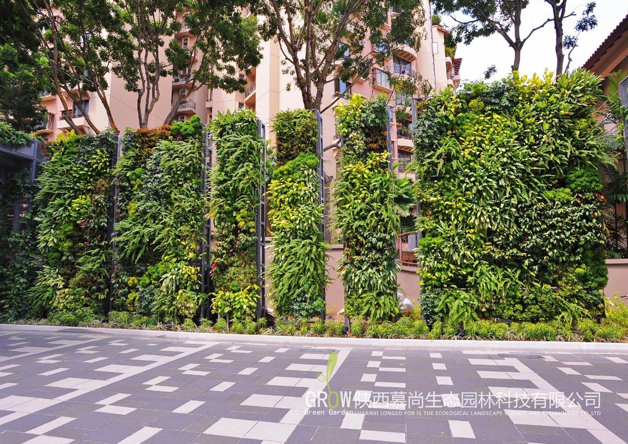 室外垂直绿化