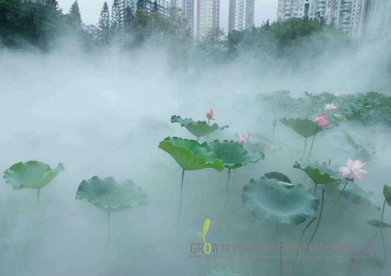 雾森景观案例展示