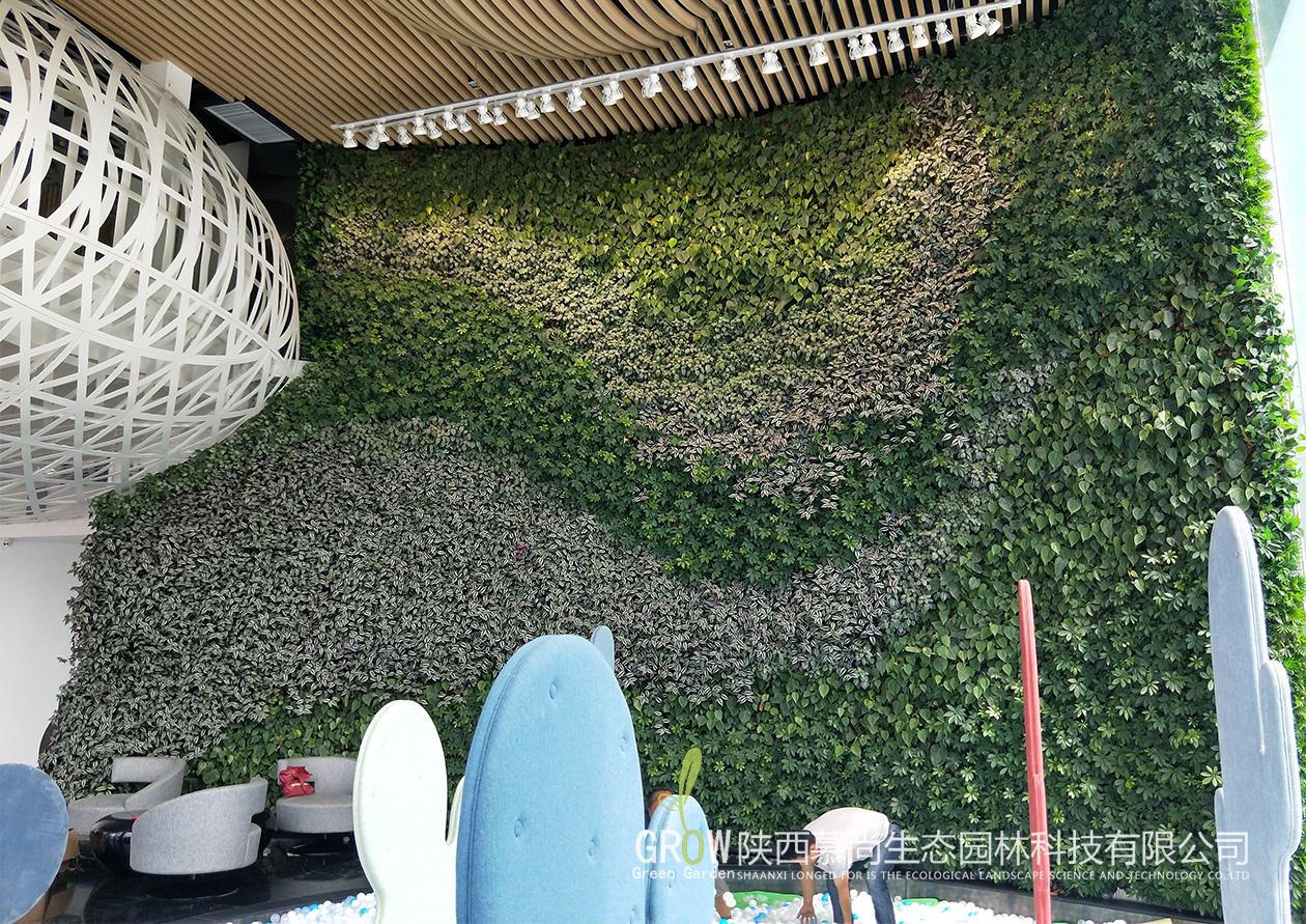 汤峪国际室内植物墙