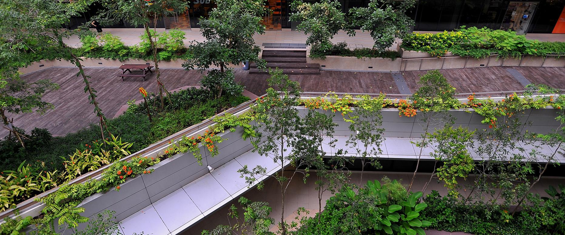 露台花园屋顶花园设计