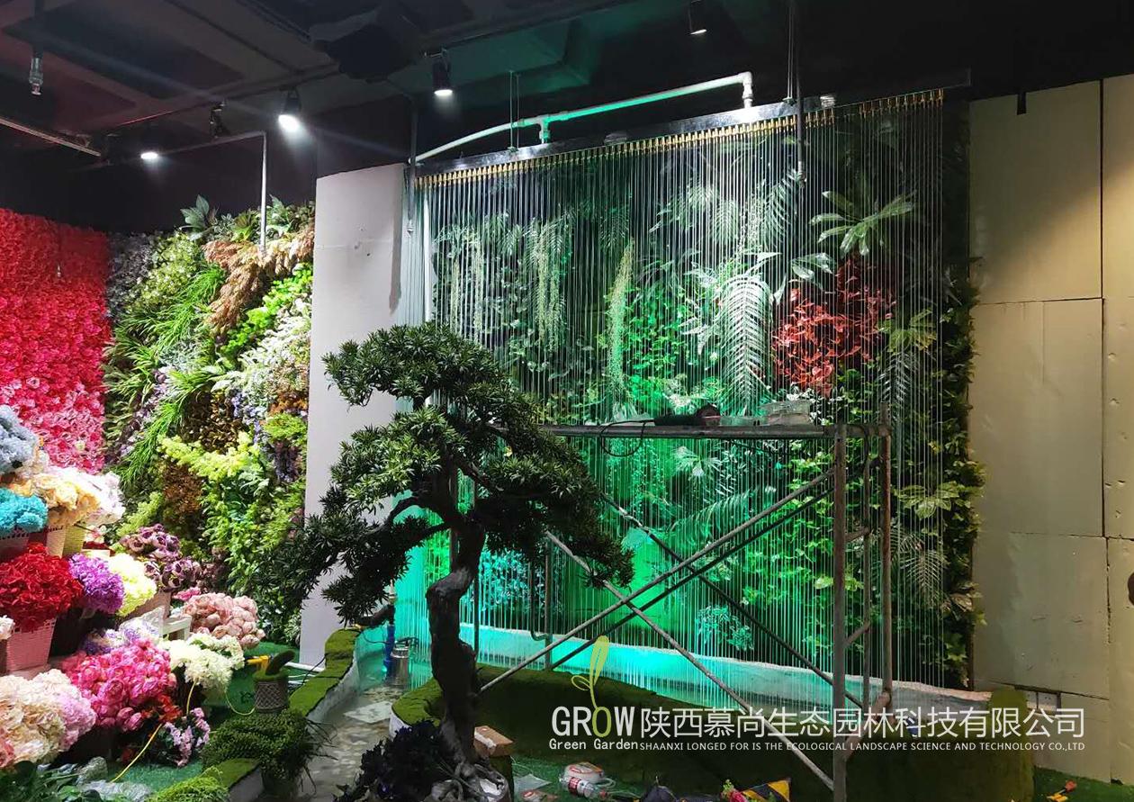 对于室外立体绿墙,应该怎么选择植物?