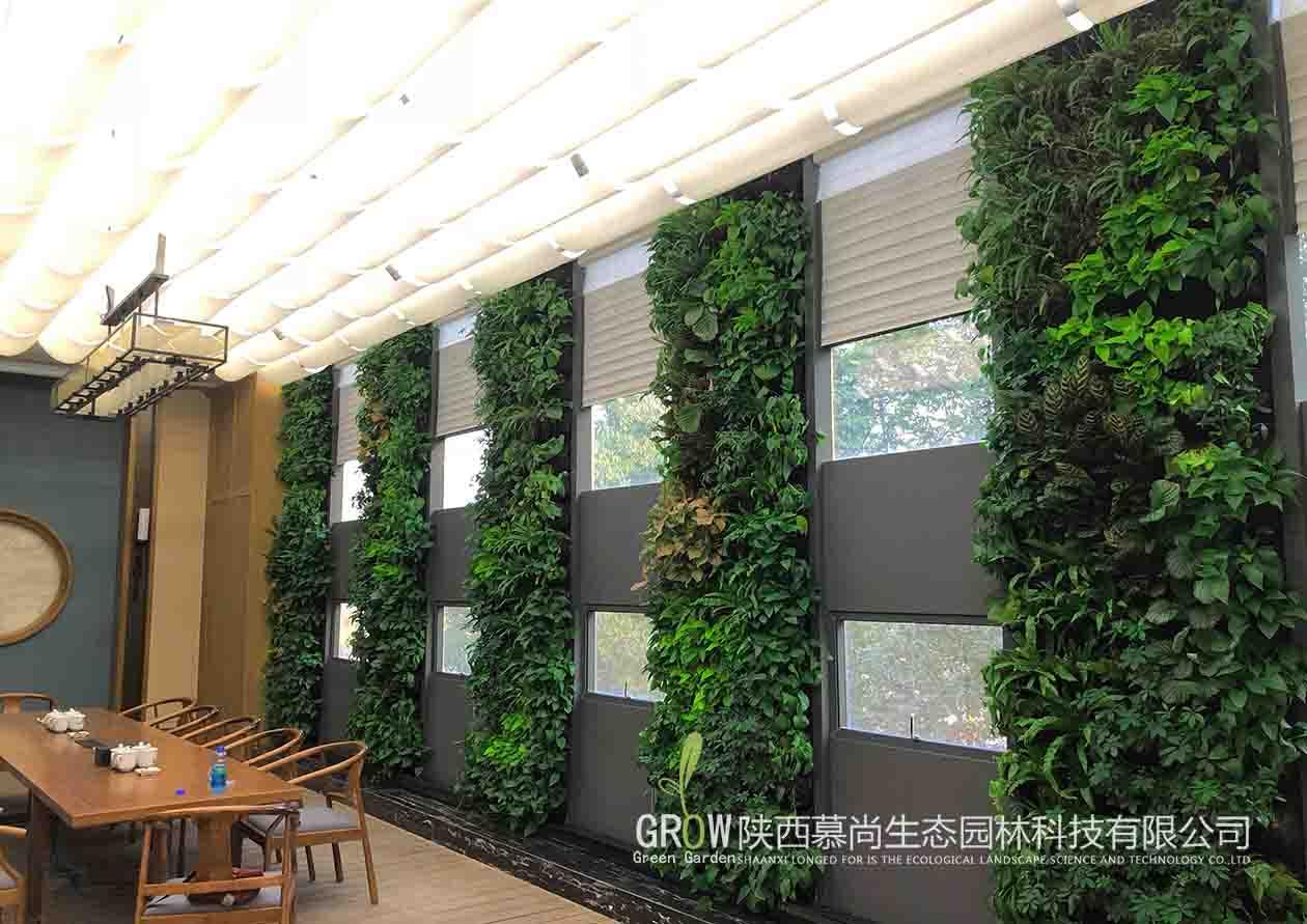 辦公室室內植物墻
