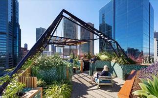 打造英式庭院设计能种植哪些植物呢?
