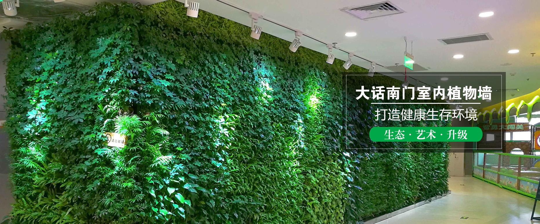 植物墙在安装完毕后如何进行打理呢?