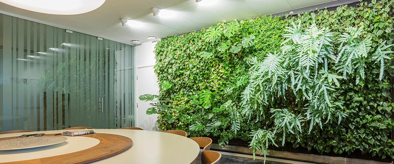 植物墙能给你带来什么价值