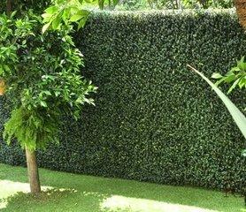 仿真植物墙该怎样保养