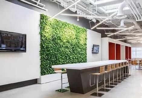 立体绿化已逐渐向高空发展
