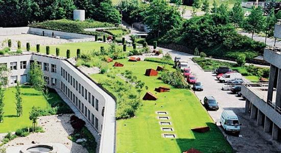 建造屋顶绿化会出现哪些常见的问题?