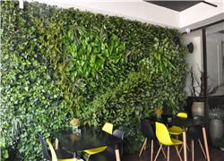 仿真植物墙和植物墙的制作方法一样吗