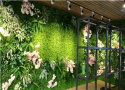 植物墙安装完应当如何维护保养?