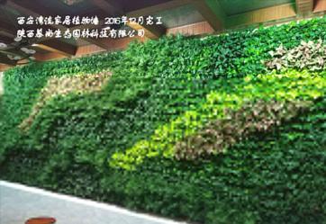 湾流室内植物墙