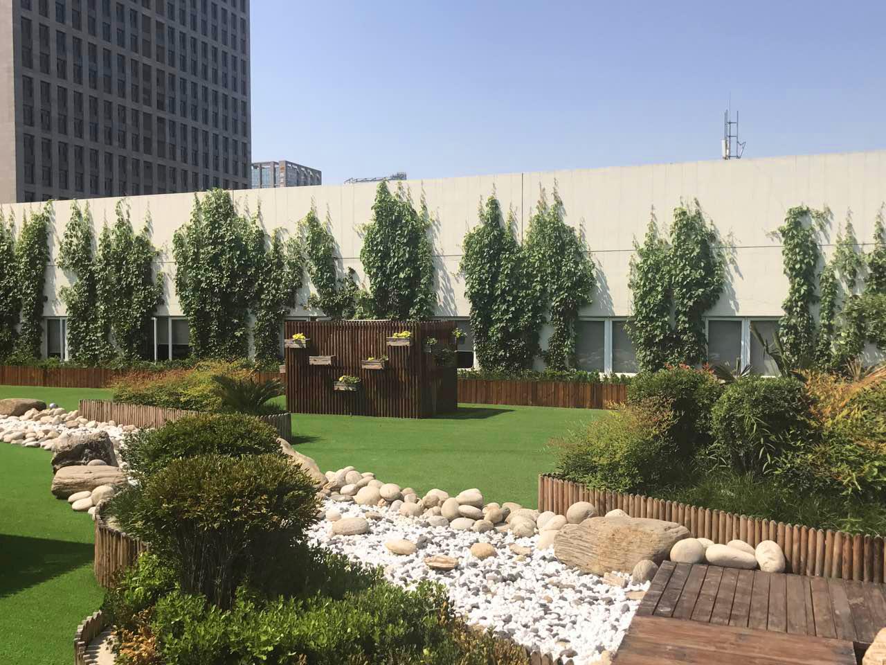 屋顶绿化:让植物扎根屋顶 为城市绿化锦上添花