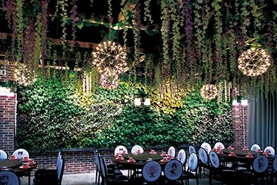 宝鸡餐厅生态植物墙