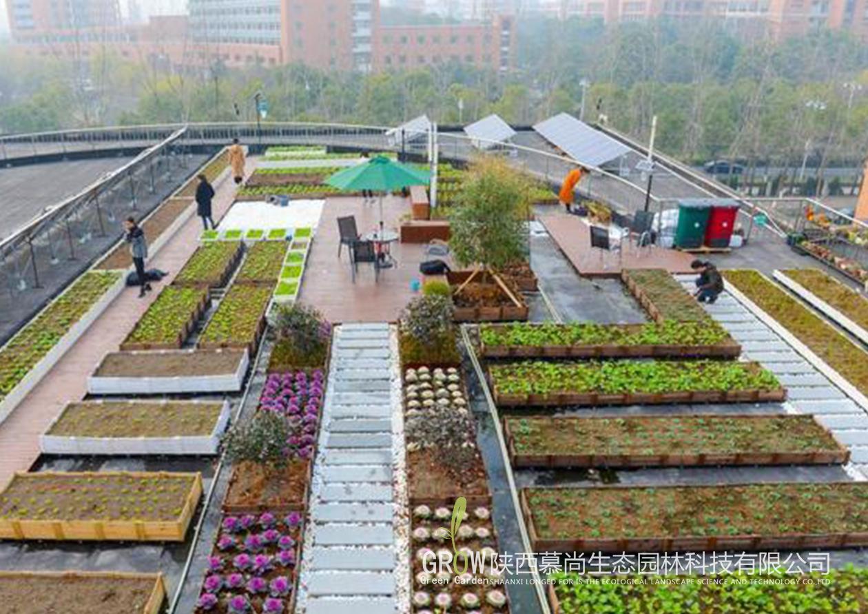 屋頂綠化過程中防護排水施工的一些方法