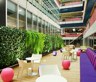 高质量植物墙具备哪些标准