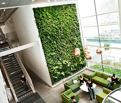 西安绿植墙