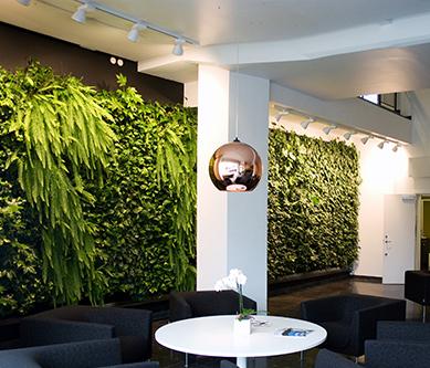 西安绿色植物墙