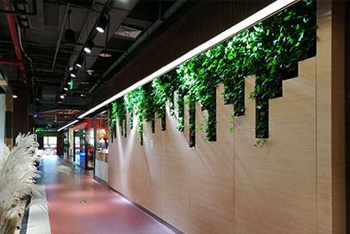 大话南门绿色植物墙