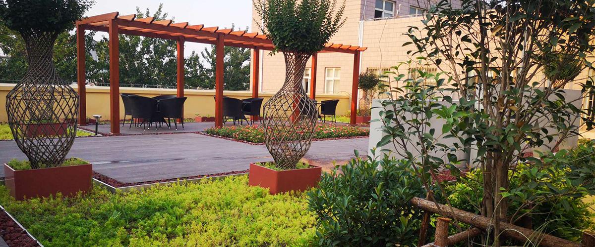 屋顶绿化植物配置要点分享