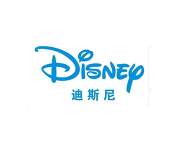 迪斯尼Disney验厂