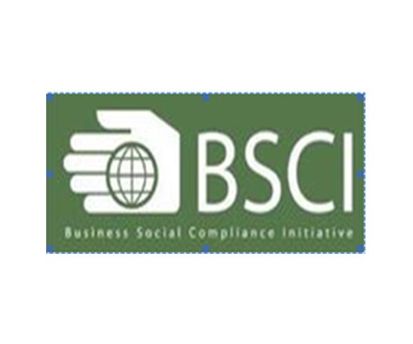 BSCl社会责任管理体系