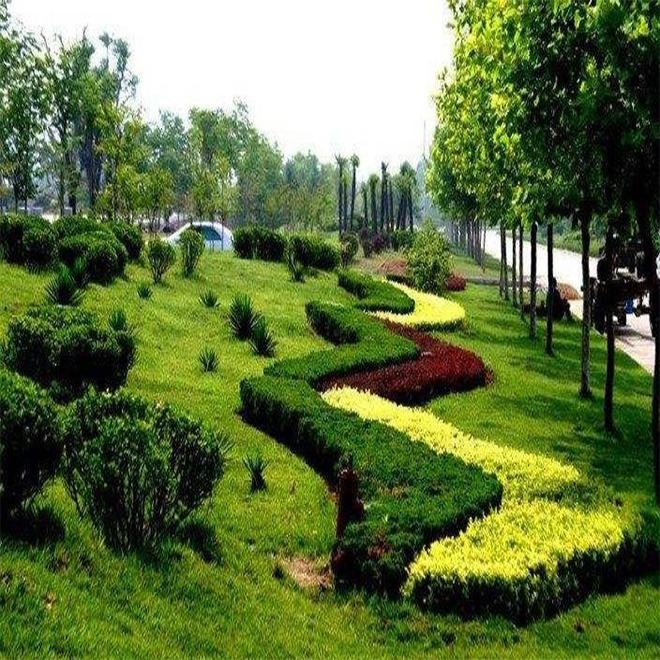 别墅花园改造,尽花园设计之所能改造属于自己的花园天地