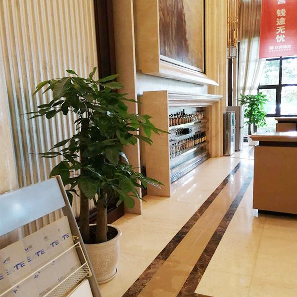 绵阳房地产销售中心植物租赁案例
