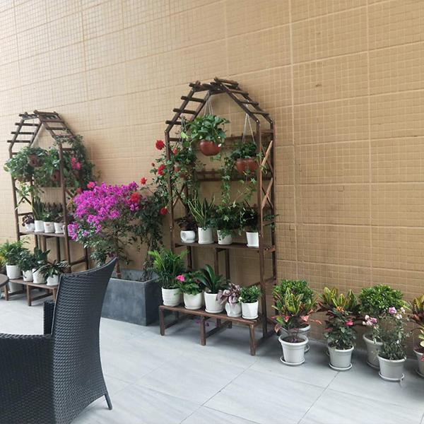 绵阳园艺山写字楼花卉租摆案例