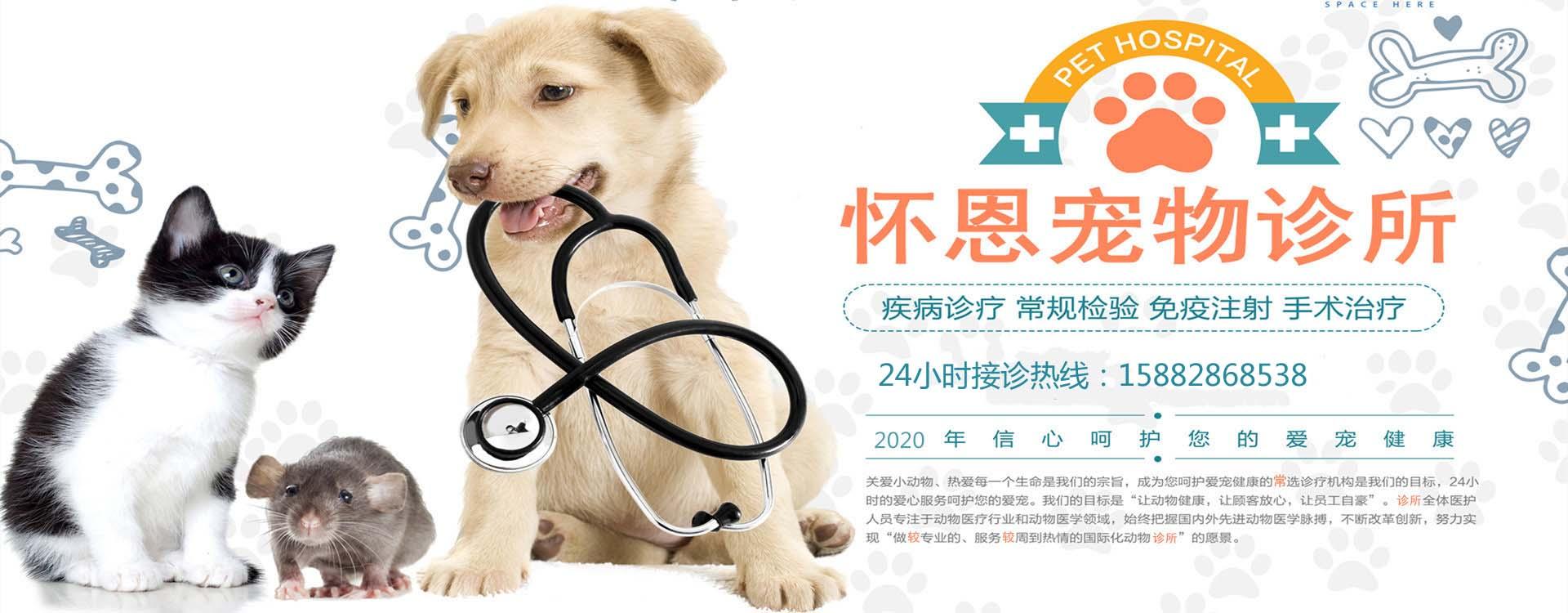 绵阳宠物诊所-怀恩宠物