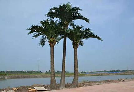 户外仿真椰子树