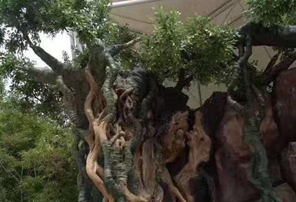 大型仿真榕树