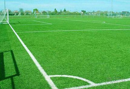 球场仿真草坪