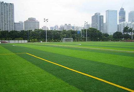 运动场仿真草坪