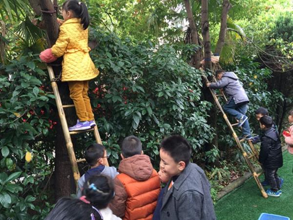 幼儿园户外培训