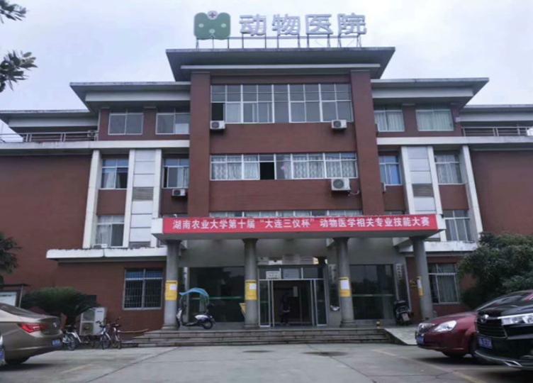 农大动物医院