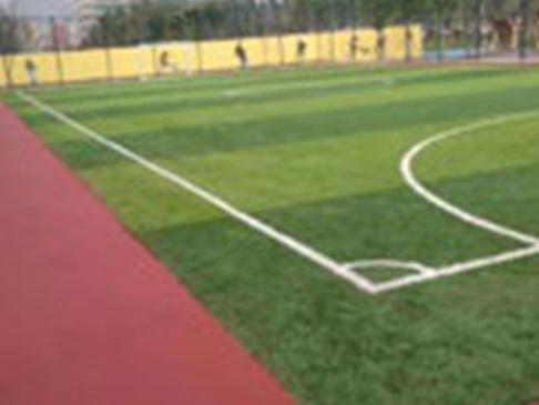 简单了解各种学校运动场地坪的应用