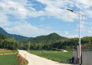 殿下村村道光能路灯工程由汉阳光能科技施工!
