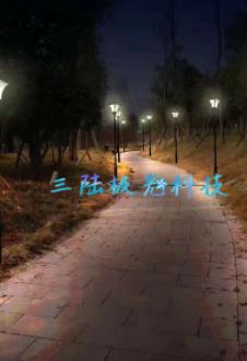 SL1光能亮化工程
