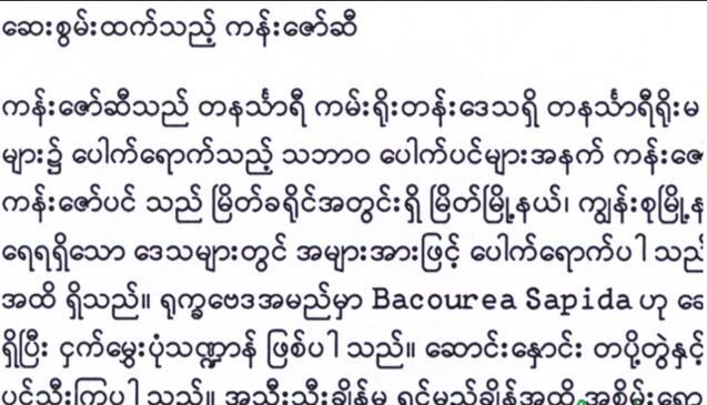 昆明緬甸語全日制培訓課程