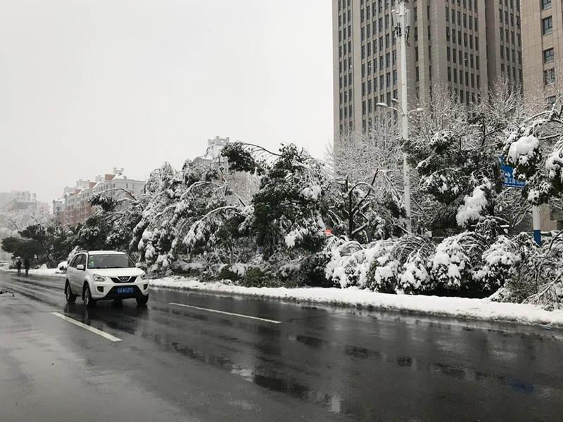 �V�|皮革�S家直�N公司接到�安徽暴雪致13人死亡百�f人受��