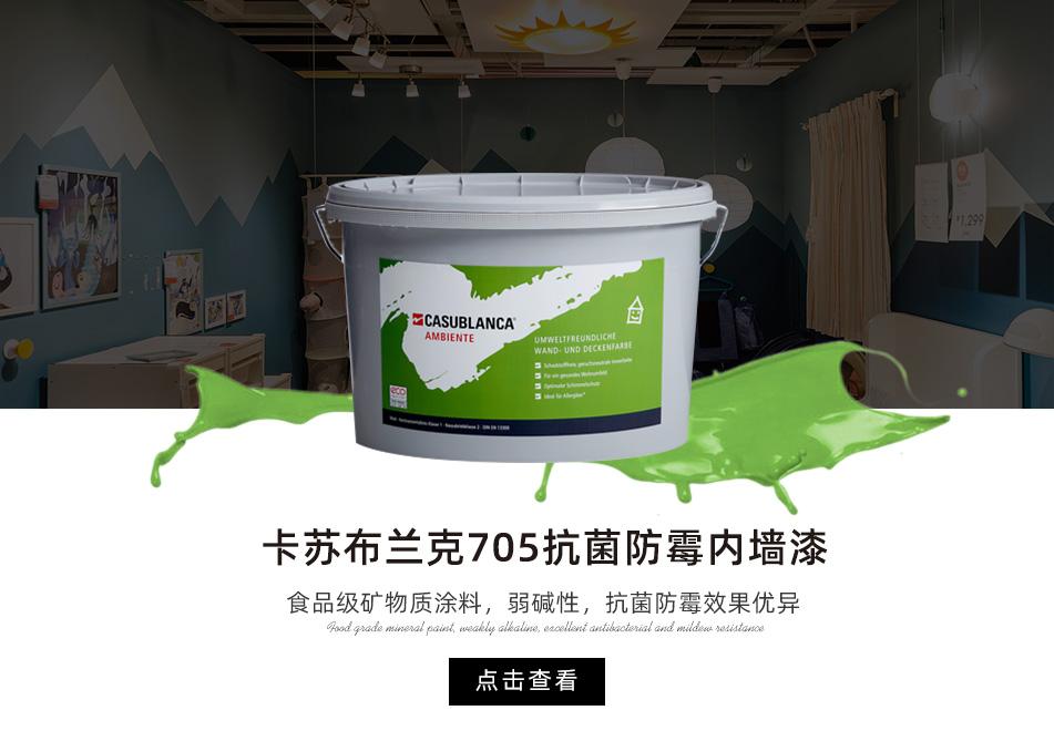 卡苏布兰克705抗菌防霉内墙漆 b3