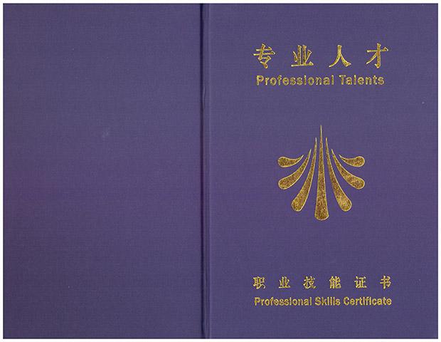 荣誉资质_职业技术证书