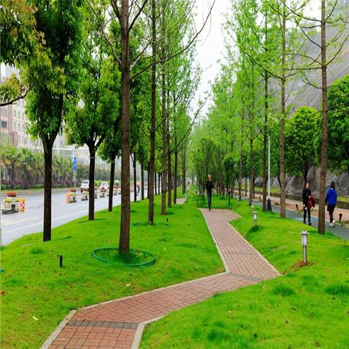 遵义城市绿道