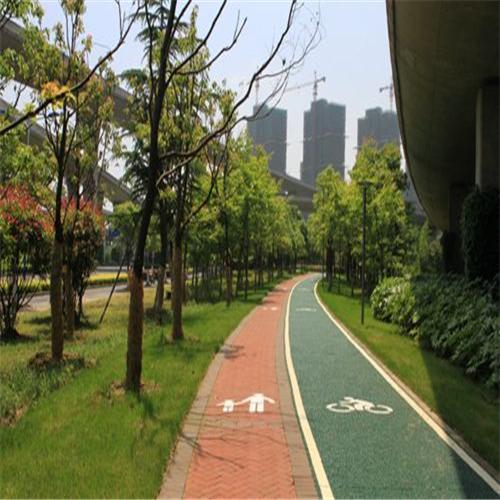 昆明城市绿道
