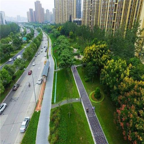 成都城市绿道