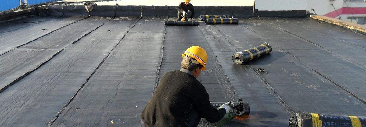 屋面堵漏防水