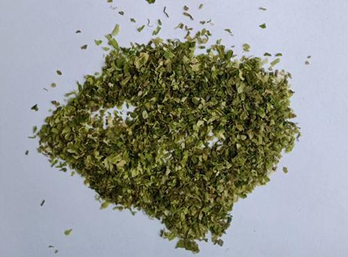 用海带粉末作龟饲料添加剂改善饲料营养结构